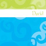 geboortekaartje david