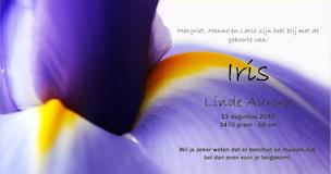 geboortekaartje iris